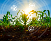 AgTech Industry page thumbnails